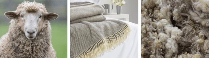 Sheep wool Baby Blanket
